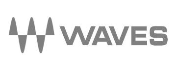 waves_logo_gray